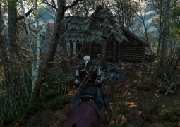 TheWitcher_003